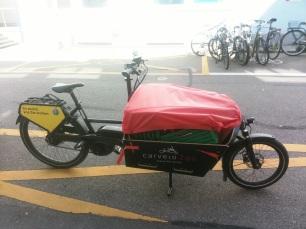 Ökologischer Transport mit Cargo-Bike